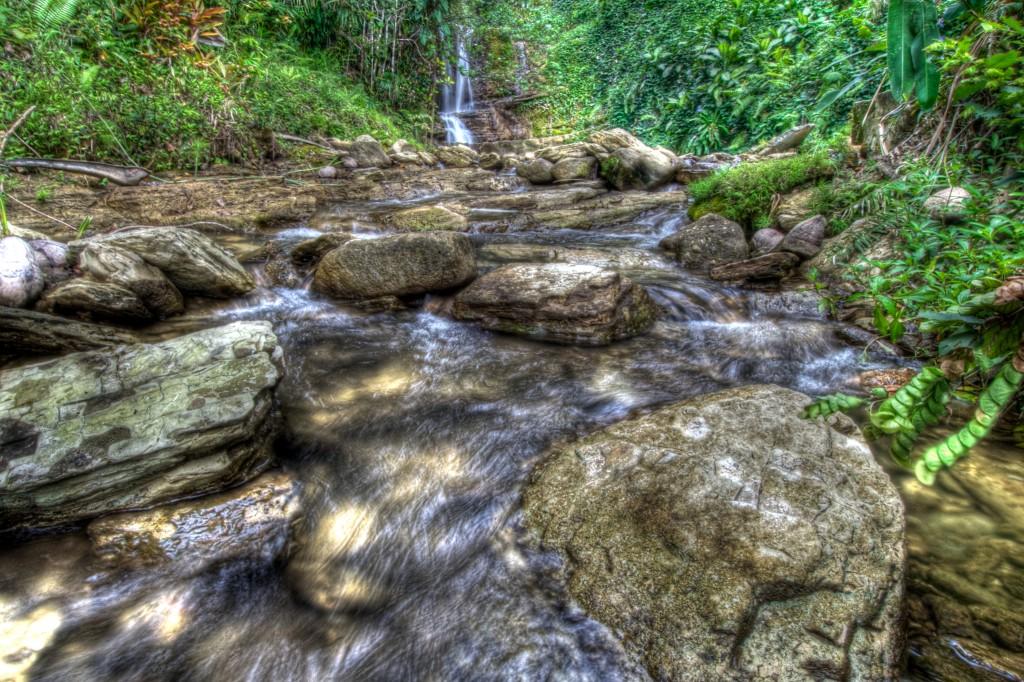 Downstream of Namo Falls