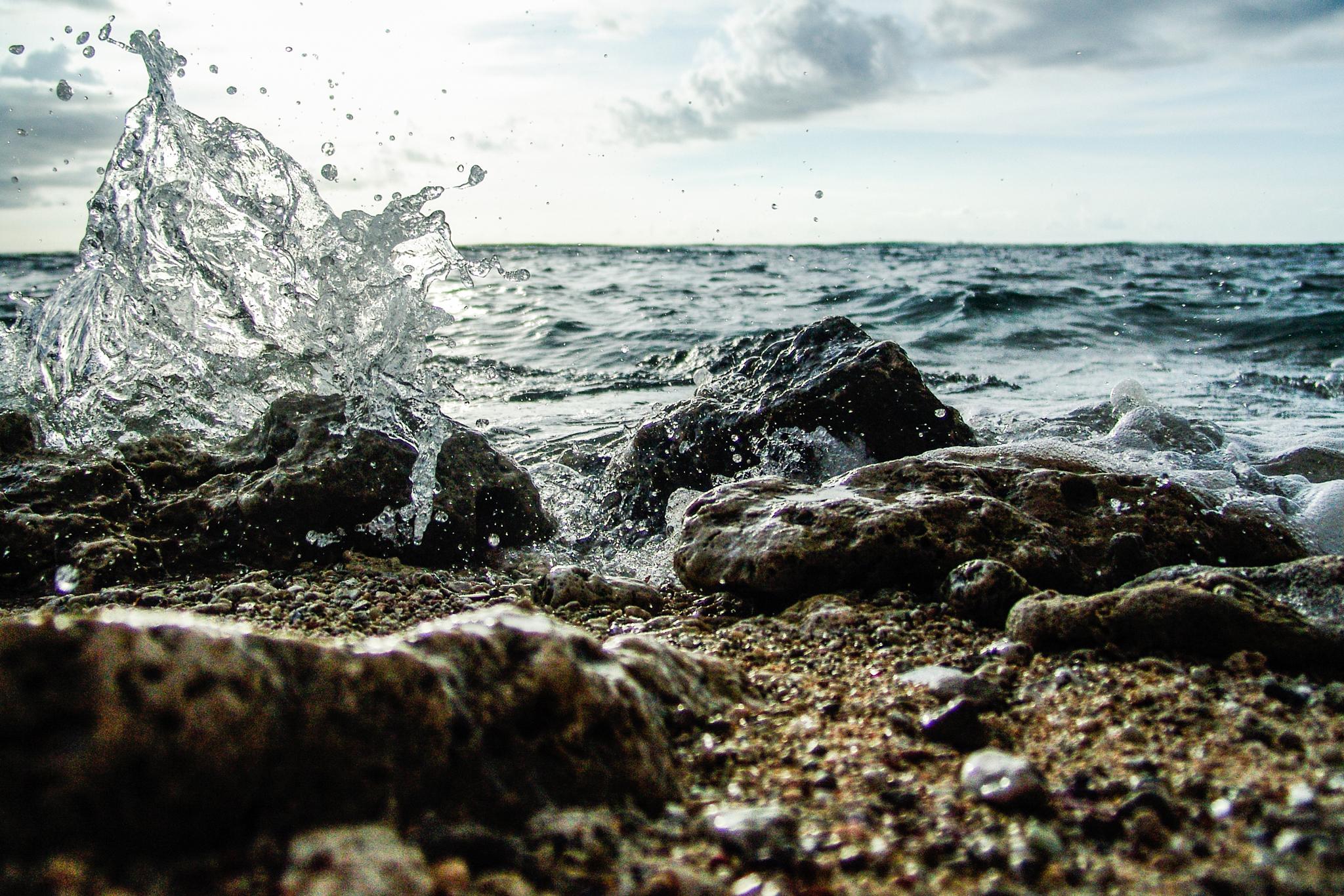 Splash (September 2006)
