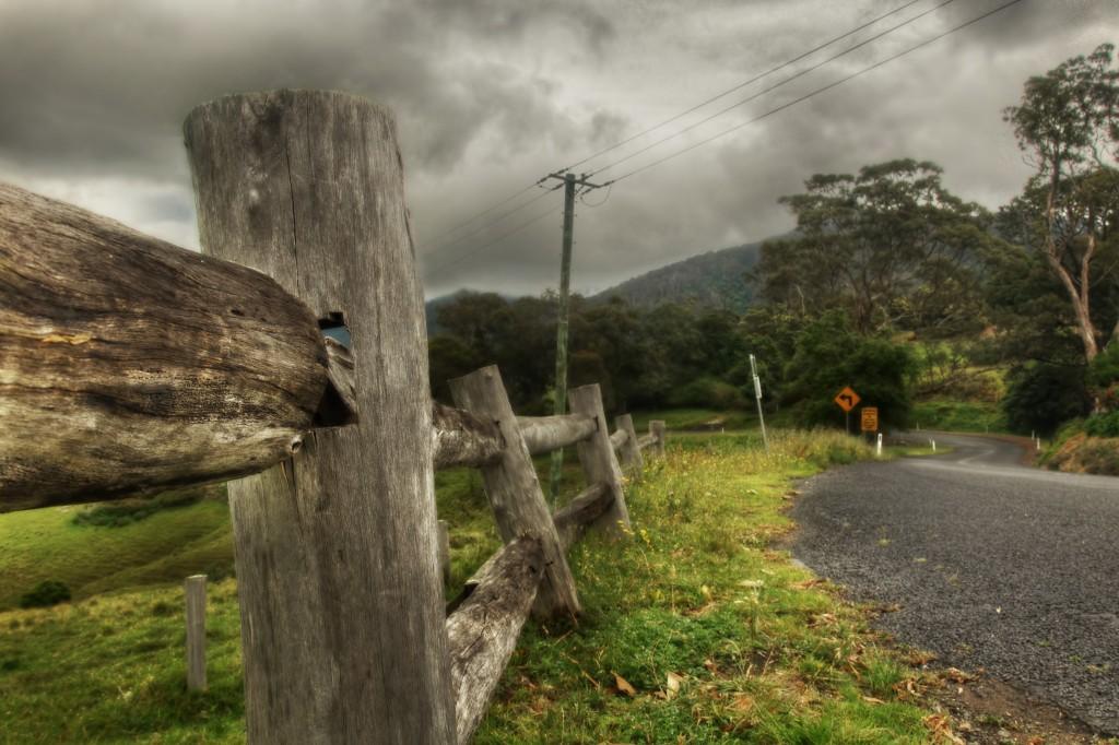 Tilba Roadside