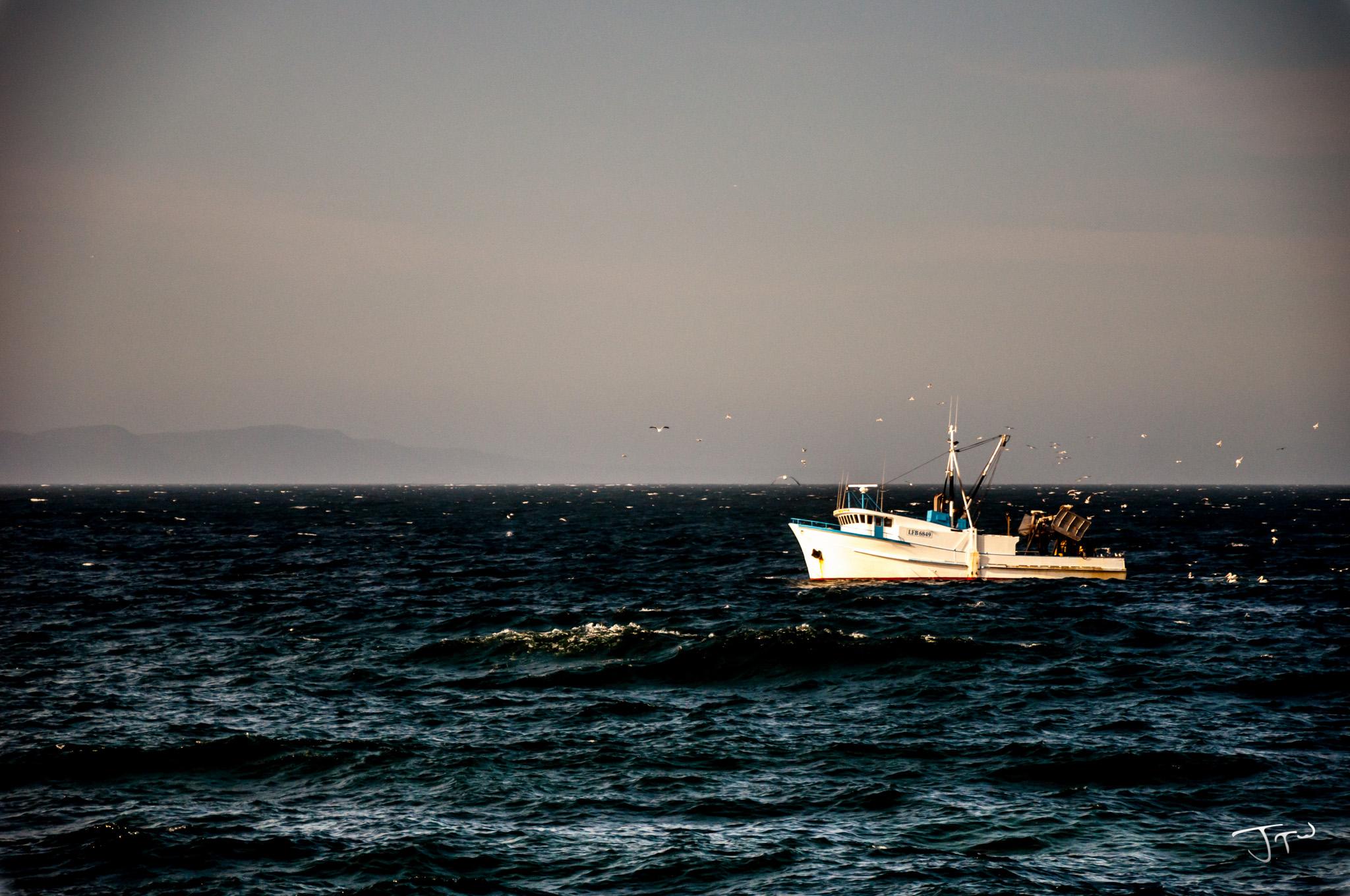 Wollongong Fishing Boat